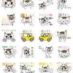 モテる男のラインスタンプ「女性へ気遣い上手なオス猫」発売開始!!